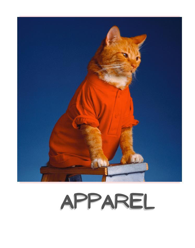 Cat apparel
