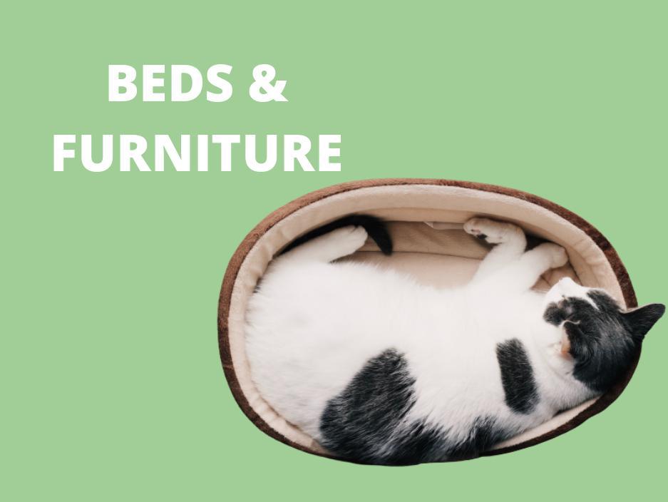 cat bed furniture