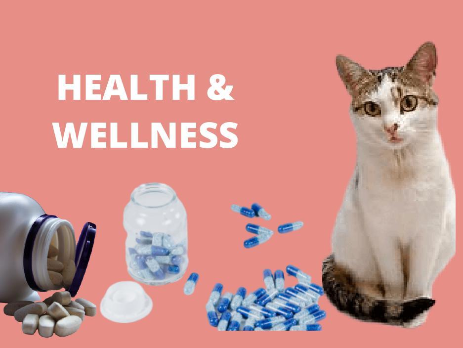 cat health wellness