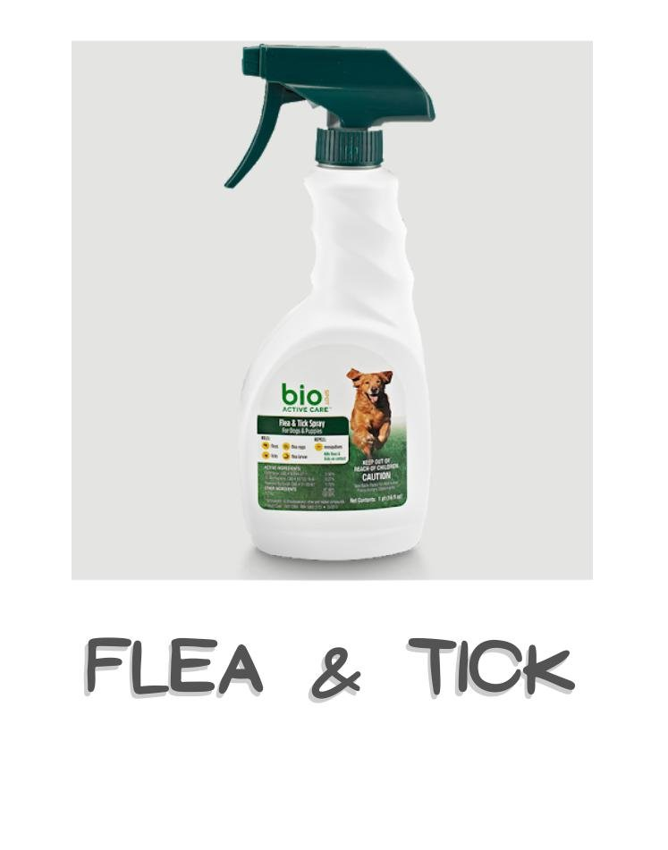 Dog flea & tick control